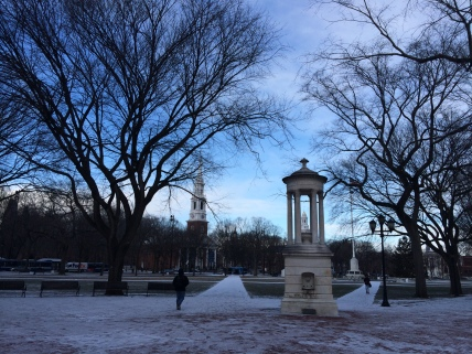 The New Haven Green around sunset, January 7, 2015.